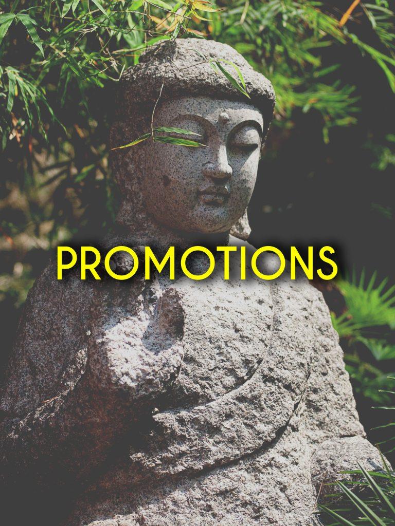 我们目前正在有限的时间内展开超值的促销活动。 在此了解更多Nirvana促销!